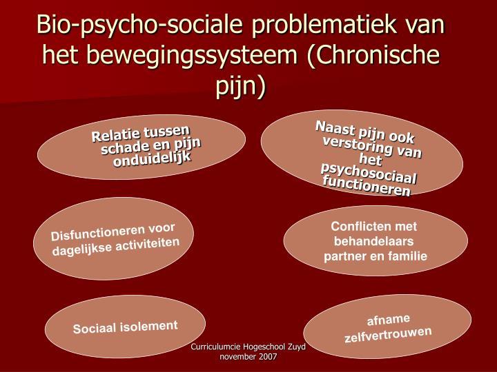 Bio-psycho-sociale problematiek van het bewegingssysteem (Chronische pijn)