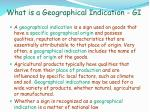 what is a geographical indication gi