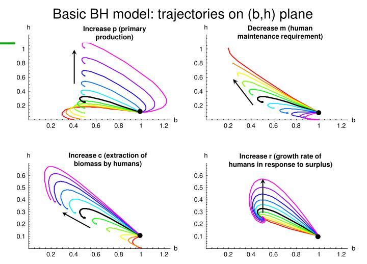 Basic BH model: trajectories on (b,h) plane