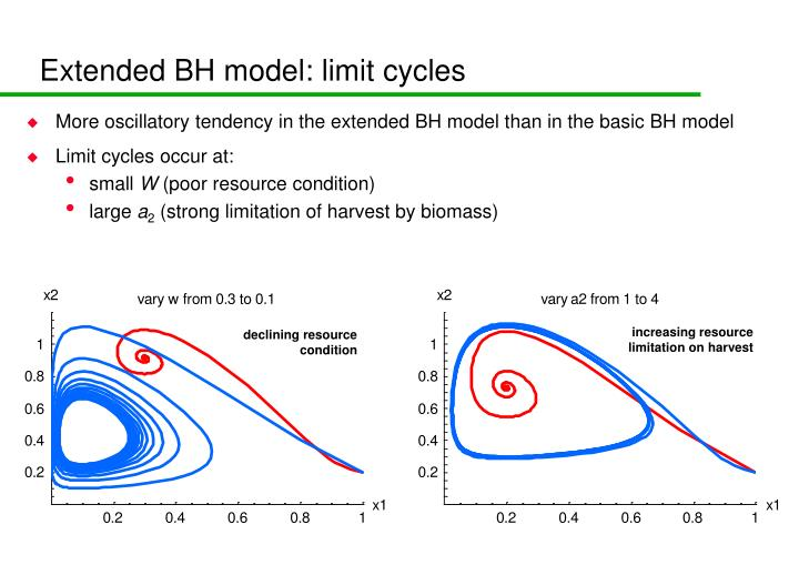 Extended BH model: limit cycles