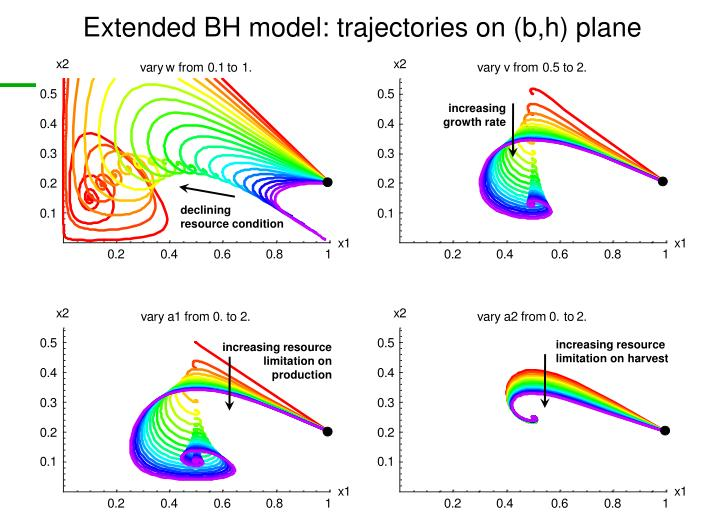 Extended BH model: trajectories on (b,h) plane