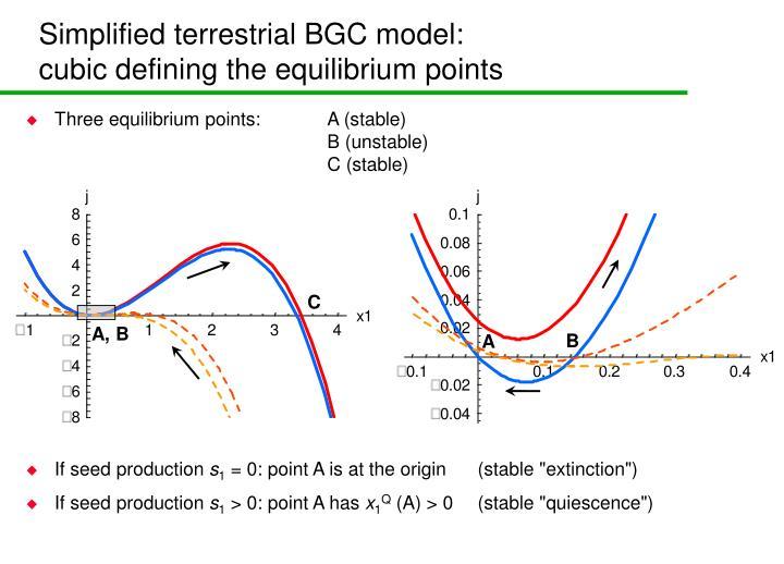 Simplified terrestrial BGC model: