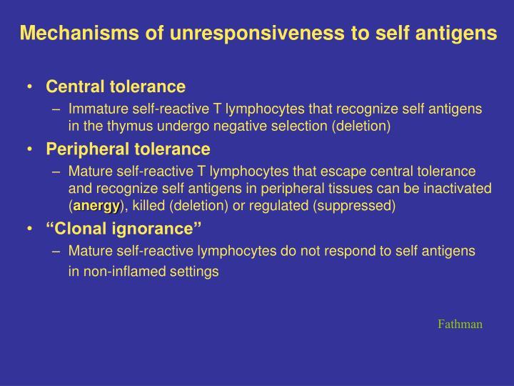 Mechanisms of unresponsiveness to self antigens