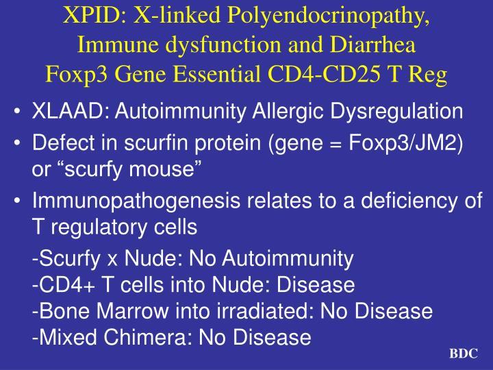 XPID: X-linked Polyendocrinopathy, Immune dysfunction and Diarrhea
