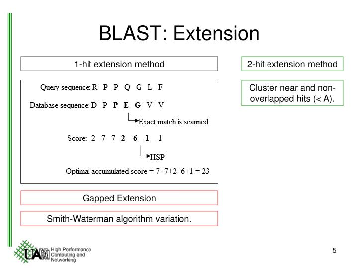 BLAST: Extension