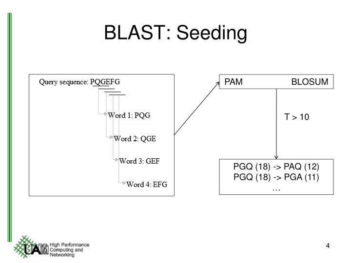 BLAST: Seeding