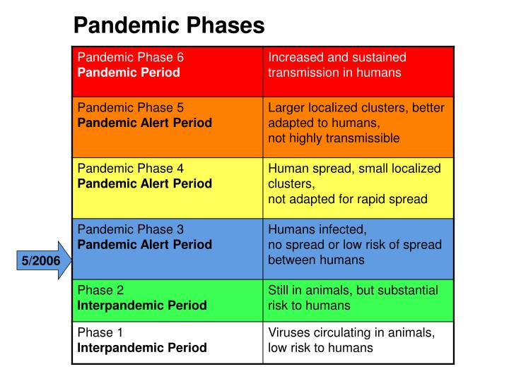 Pandemic Phases
