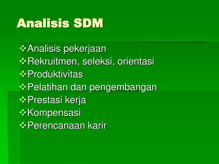 analisis sdm