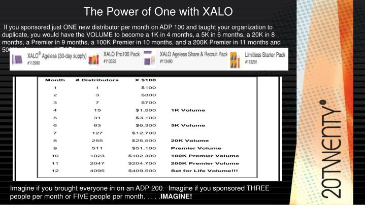 The Power of One with XALO