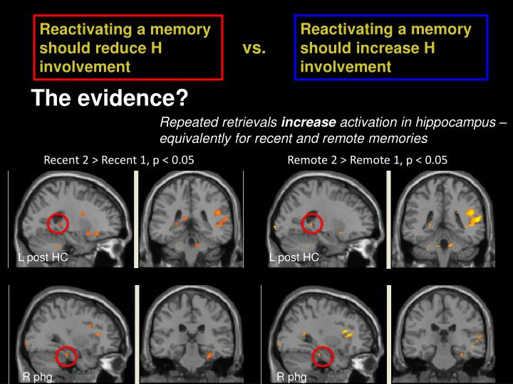 Reactivating a memory should increase H involvement