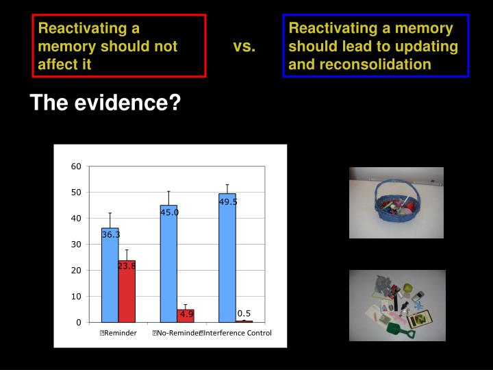 Reactivating a memory should lead to updating and reconsolidation