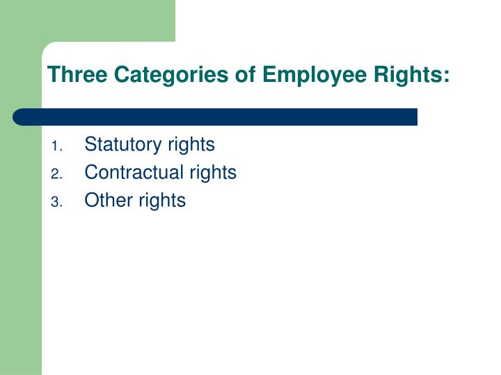 Three Categories of Employee Rights: