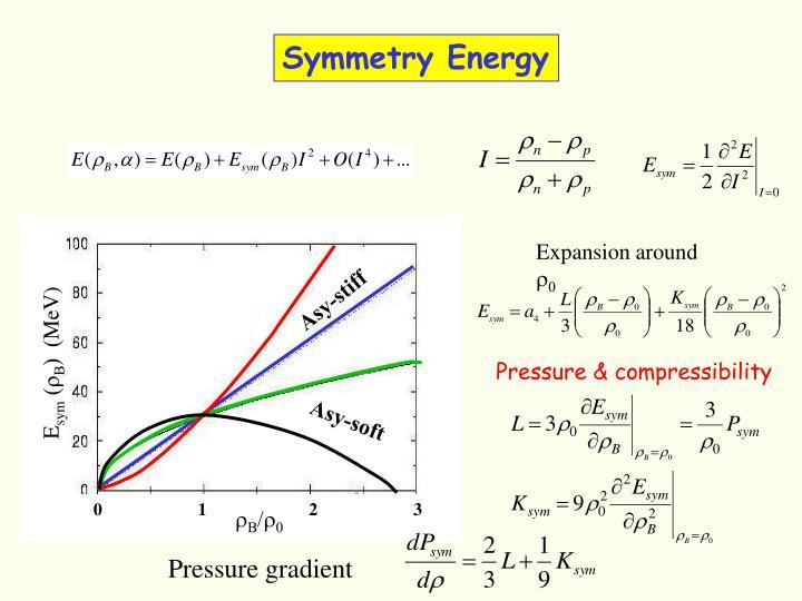 Symmetry Energy