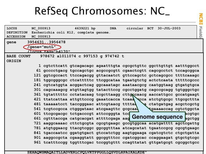 RefSeq Chromosomes: NC_