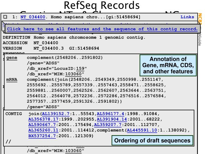 Click here to see all features and the sequence of this contig record