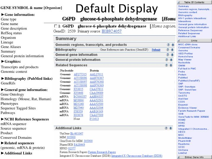 Default Display