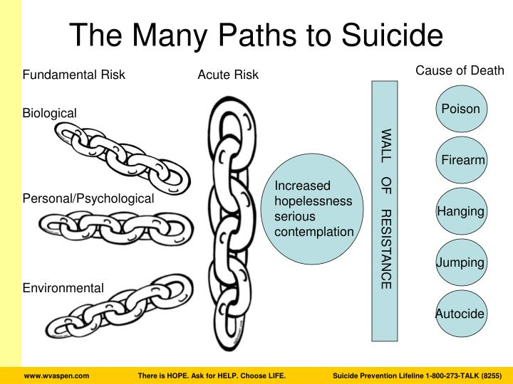 The Many Paths to Suicide