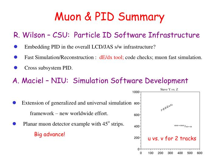 Muon & PID Summary