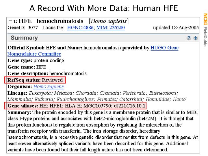 A Record With More Data: Human HFE