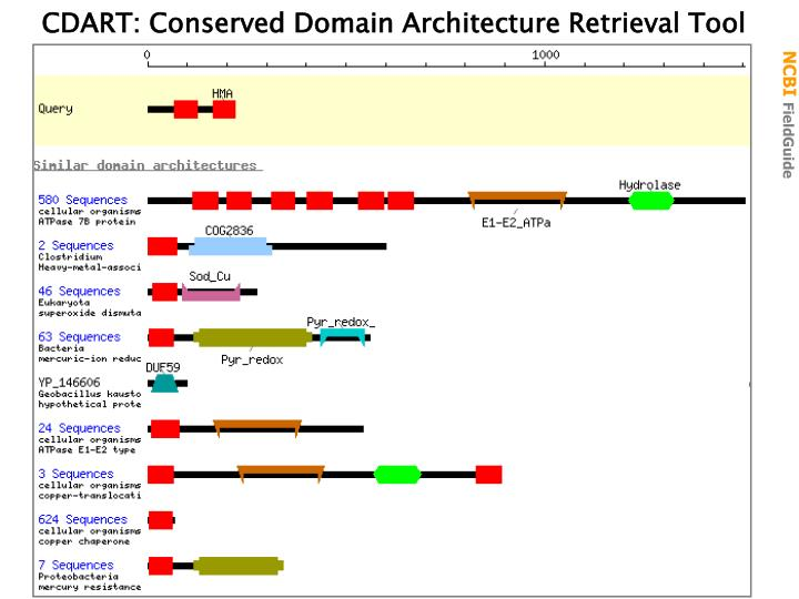 CDART: Conserved Domain Architecture Retrieval Tool