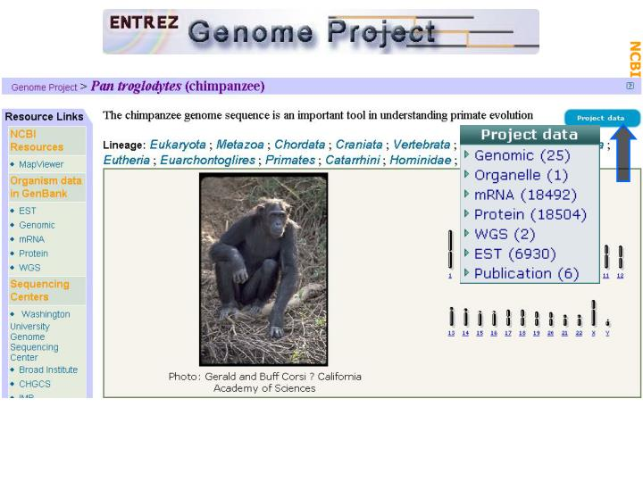 Gen Biol: Gen Resources