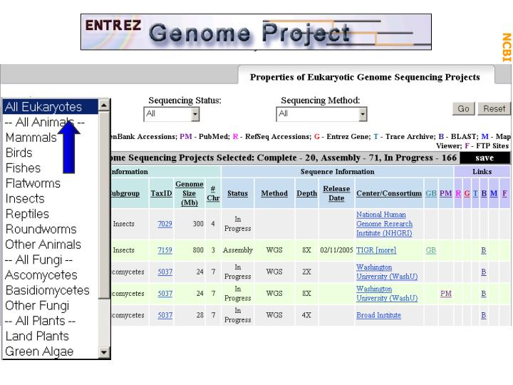 Genome Projects: microb