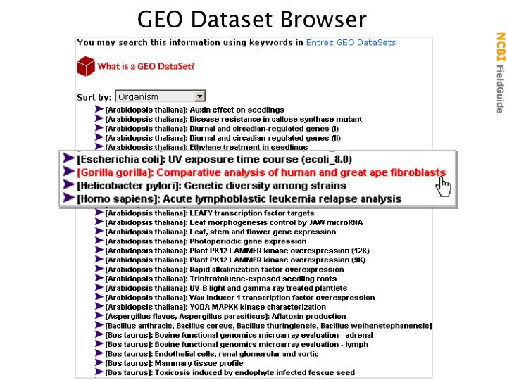 GEO Dataset Browser