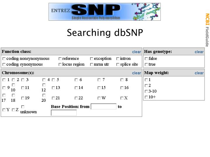 Searching dbSNP
