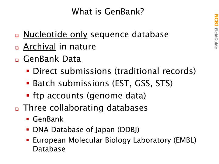 What is GenBank?