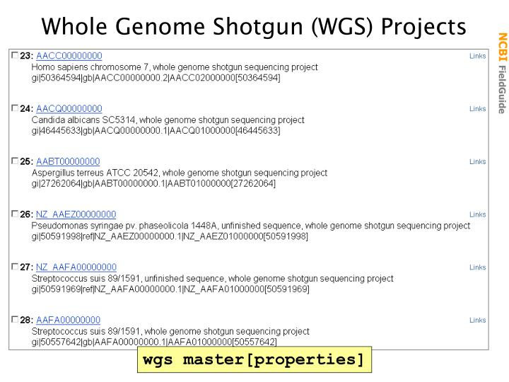 Whole Genome Shotgun (WGS) Projects