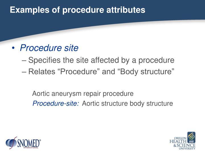 Examples of procedure attributes