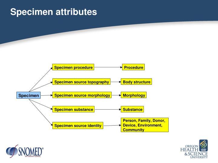 Specimen attributes