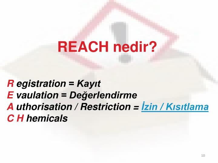 REACH nedir?
