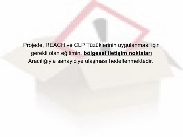 Projede, REACH ve CLP Tüzüklerinin uygulanması için