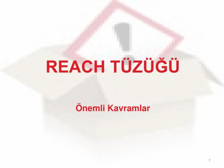 REACH TÜZÜĞÜ