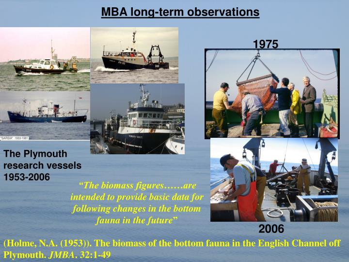 MBA long-term observations