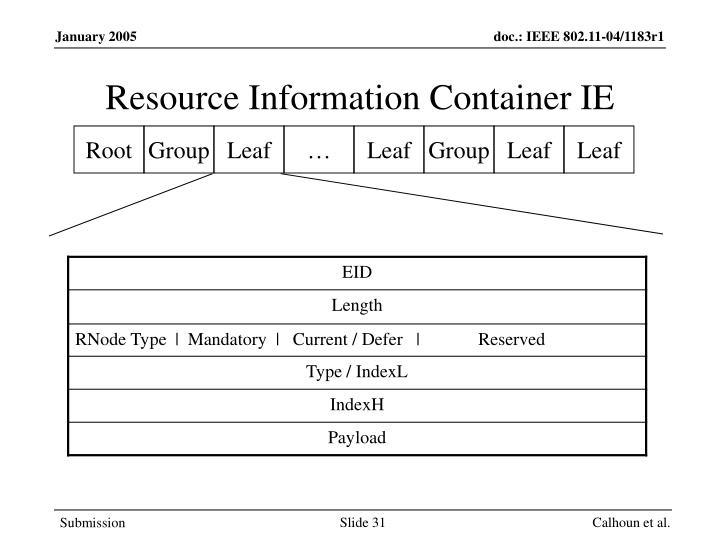 Resource Information Container IE