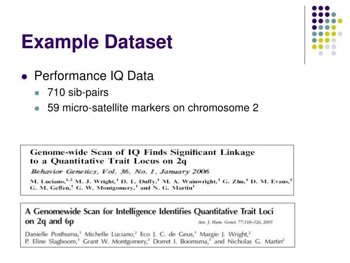 Example Dataset