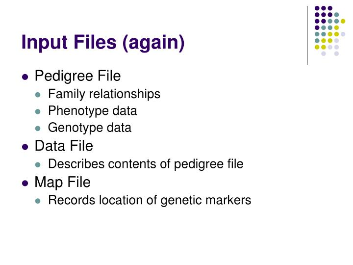 Input Files (again)