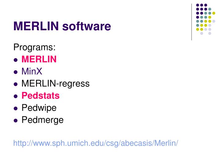 MERLIN software