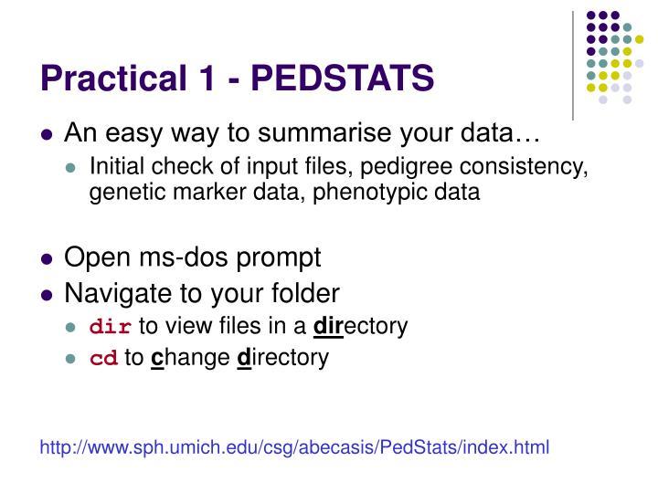 Practical 1 - PEDSTATS