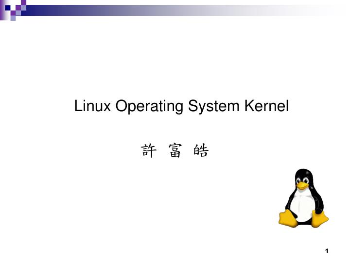 Linux Operating System Kernel