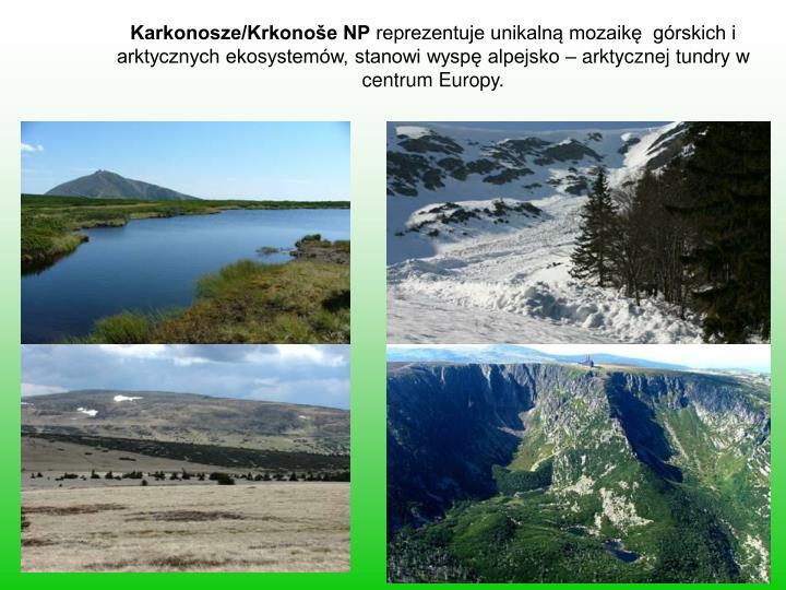 Karkonosze/Krkonoše NP