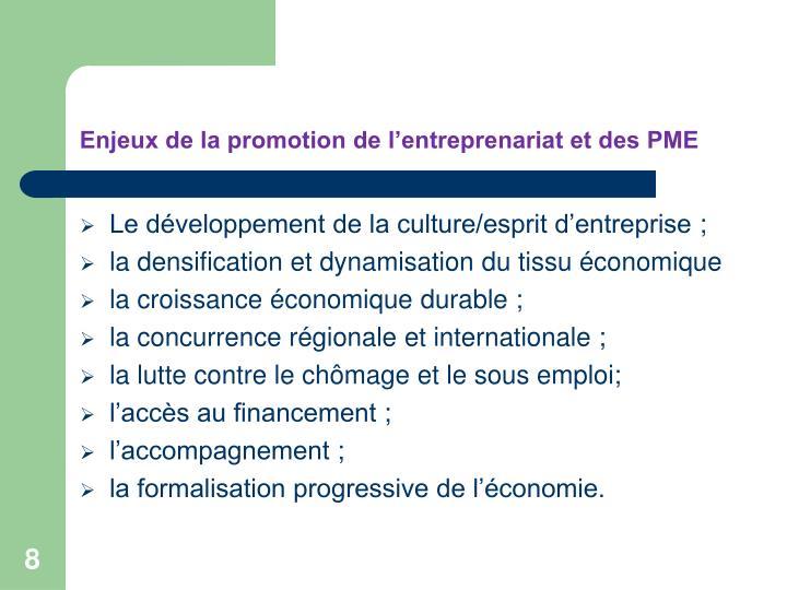 Enjeux de la promotion de l'entreprenariat et des PME