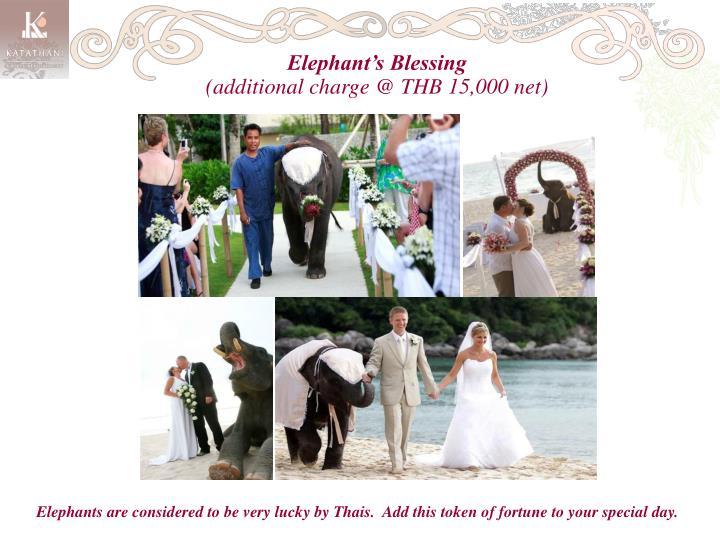 Elephant's Blessing