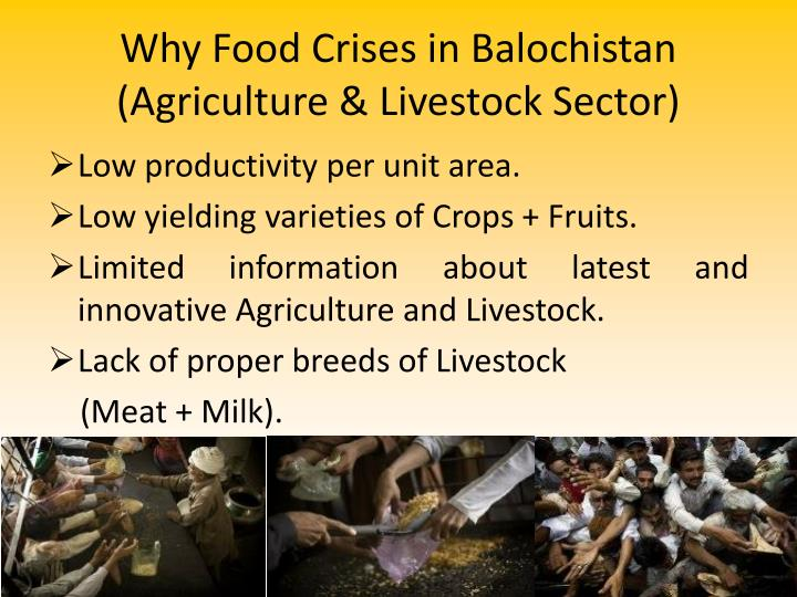 Why Food Crises in Balochistan
