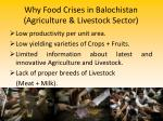 why food crises in balochistan agriculture livestock sector