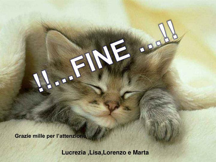 !!...FINE …!!