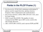 fields in the plcp frame 1