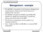 management example